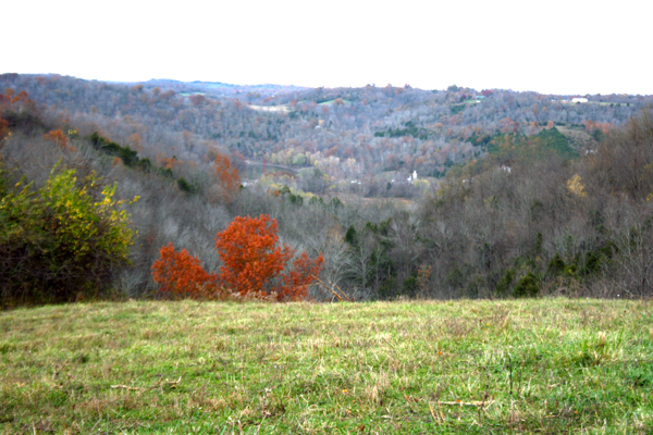 Kentucky River view